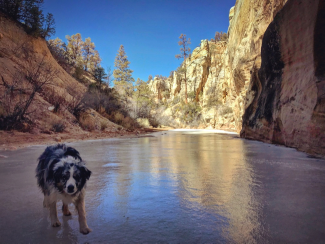 Winter in Grand Staircase - Willis Creek