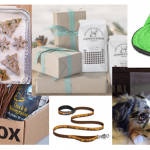 Great Gift Ideas for Trail Dogs